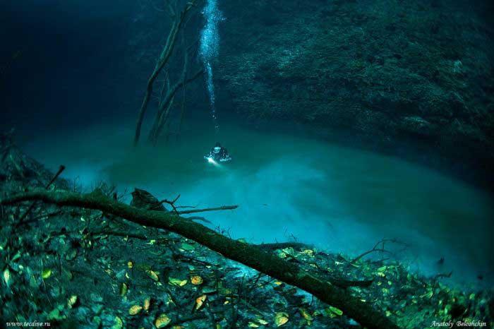 Sungai di dalam laut mexico